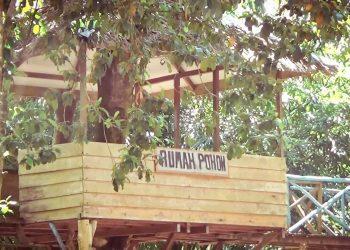 Rumah Pohon Cempaka Akan Dikembangkan Menjadi Destinasi Wisata Banjarbaru.00 00 48 14.Still001